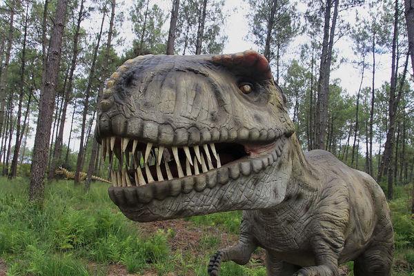 Dinosaures-parc-Azur-tyrannosaurus5