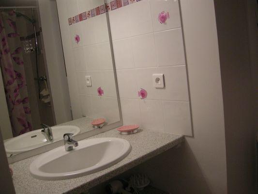 Edelweiss n°3 - Salle d'eau