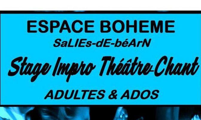 Stage Impro Théâtre/Chant