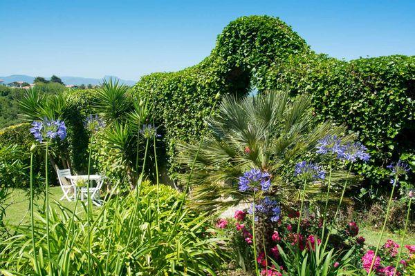 Fleurs-detente-maisondhotes-bidart-biarritz-bistaeder-2