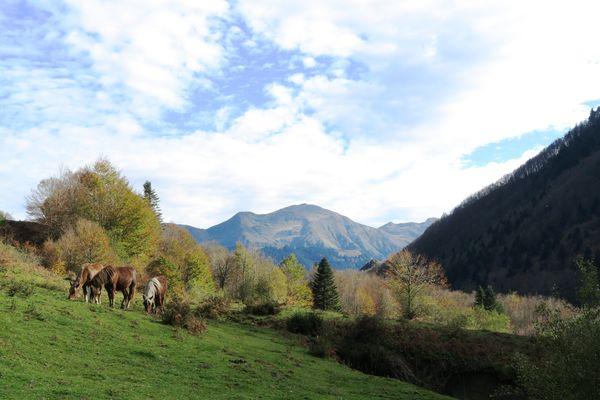 Plateau de Sanchèse