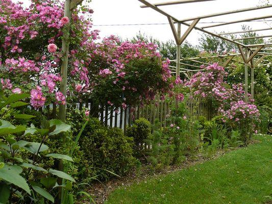 jardin deden - Jardin D Eden
