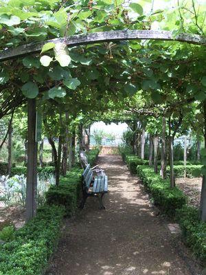 Jardin de Payot - allée JL