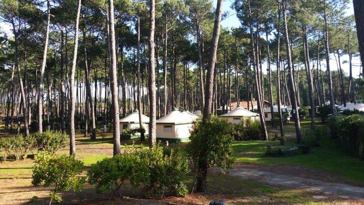 LIT_Camping_Cap2