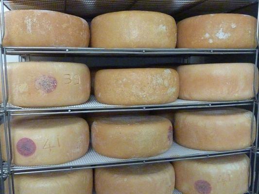 La grange à fromages - Saloir (OT)