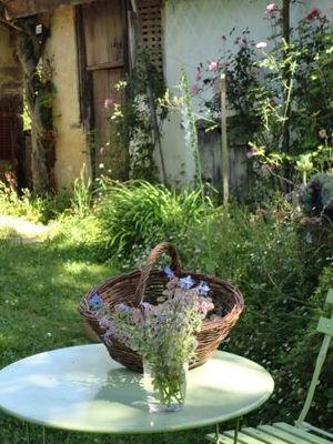 Les jardins de nigelle