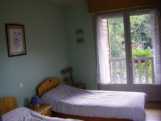 Lézard vert - Chambre verte (Magali Portet)