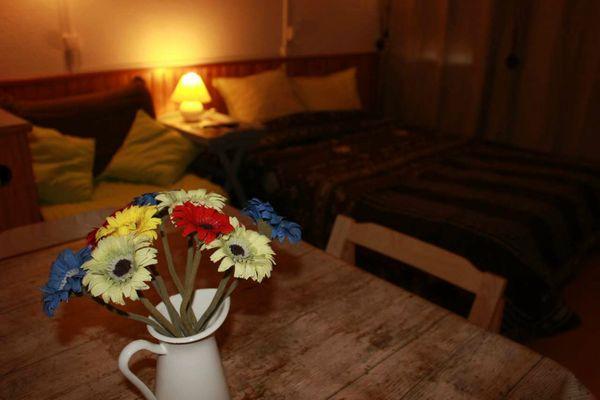 Studio Oursonnette - Fleurs