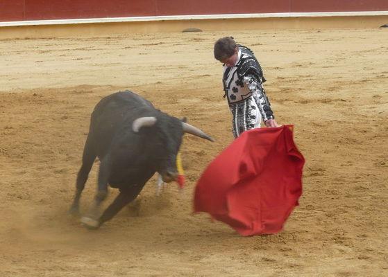 Semaine Taurine 2008 Guilon