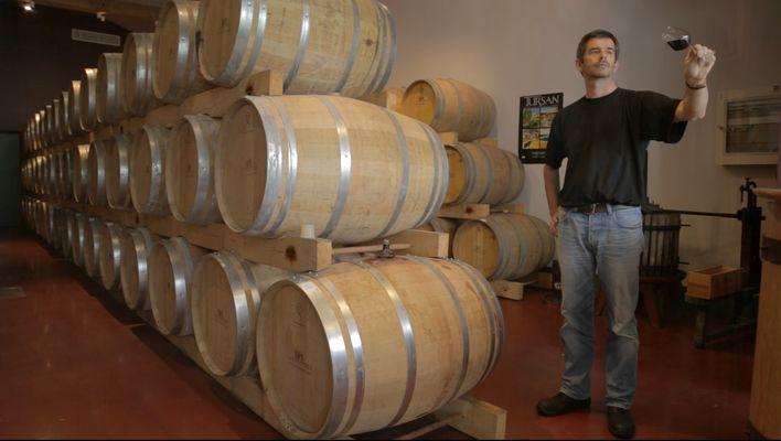 Le chai de Geaune - Cave des Vignerons de Tursan