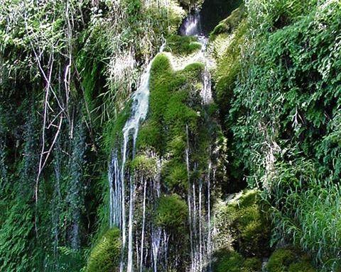 cascade de la Roche qui pleure paysage