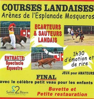course-landaise-salies-flyers-et-affiches-2016_1 (1)