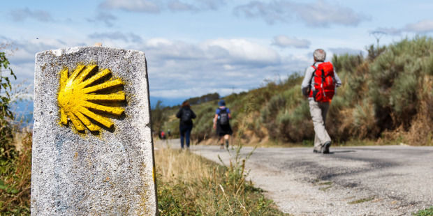 web3-camino-de-santiago-de-compestella-st-james-pilgrimage-route-yellow-sea-shell-scallop-shell-shutterstock