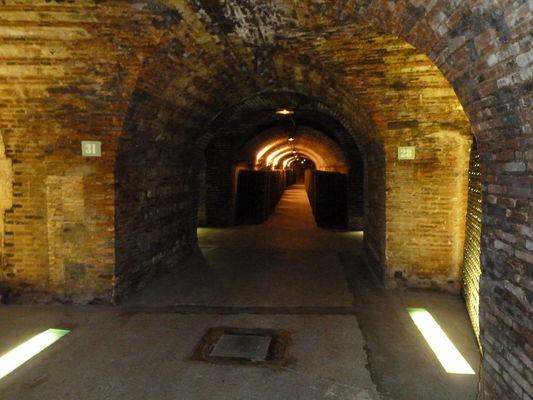 Moet&Chandon caves (4)