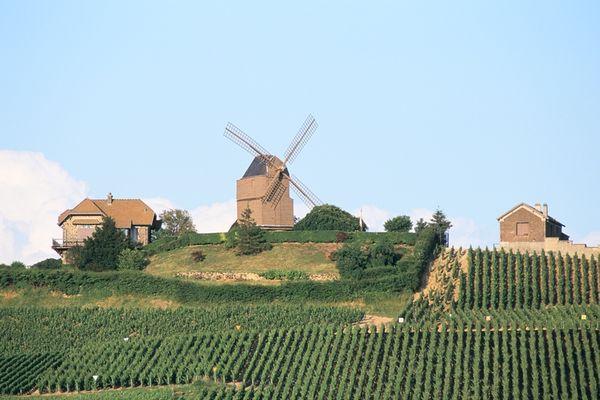 Moulin de Verzenay