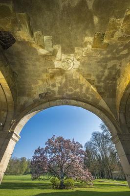 Abbaye de Trois-Fontaines