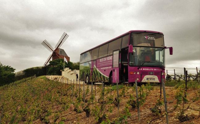 Bus en vigne