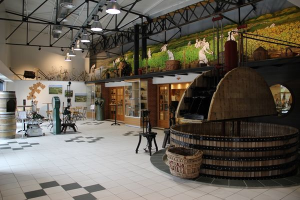 Champagne Dom Caudron - Passy-Grigny (1)