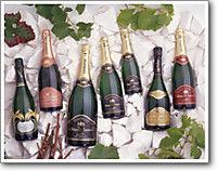 Champagne Feneuil Pointillart - Chamery