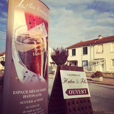 Champagne Haton et Filles - Damery