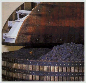 Champagne R. Gabriel-Pagin Fils - Avenay-Val d'Or