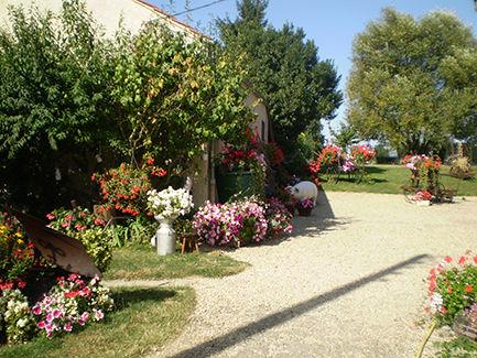 Jardin de Mme Colette FOCQUEUR
