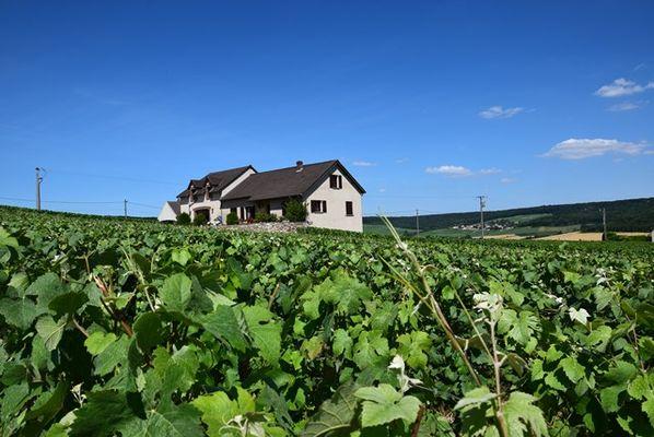 Champagne Ghislain Payer - Fleury-la-Rivière2