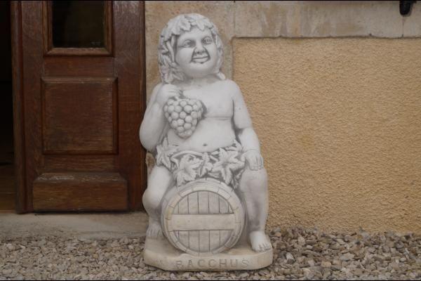 """Gîte """"Au Bacchus""""_1"""