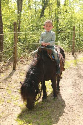 Promenade à poney ou cheval avec accompagnateur