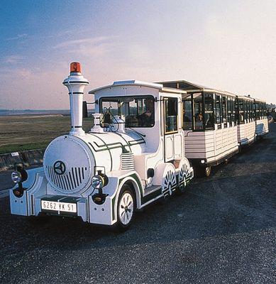 Train aux Oiseaux - Giffaumont Champaubert