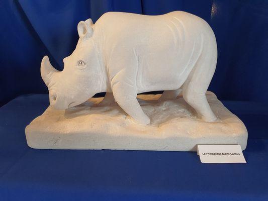 atelier-d-art-surugue-peinture-rhino