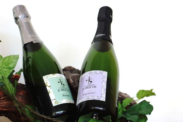 Loisy-sur-Marne-Champagne JS Briche-2018-Collection Lac du Der