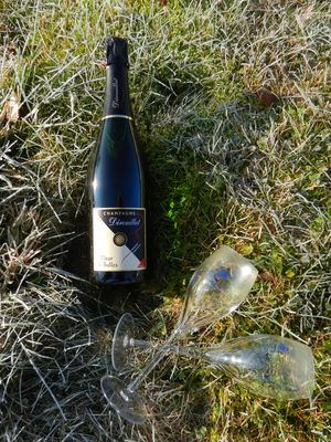 Champagne Dérouillat - Moslins