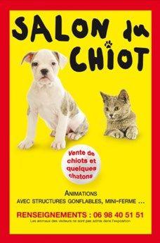 salon-du-chiot