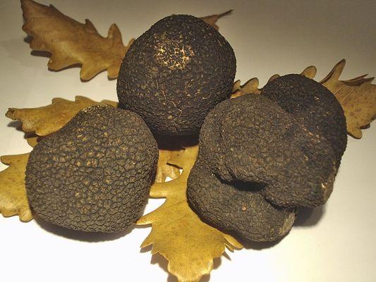 truffes-souply-menu-chalons