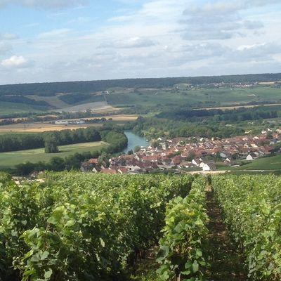visite-gourmande-champagne-jm-gobillard-hautvillers-2020--2--2