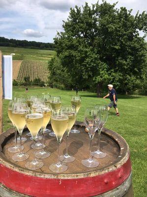 Footgolf parc en Champagne