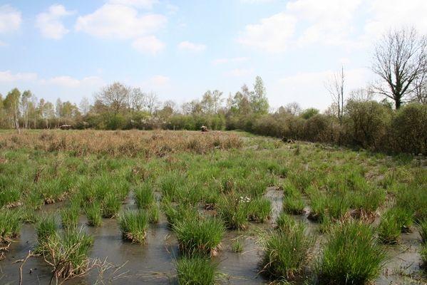 Réserve Naturelle Régionale du Marais de Reuves