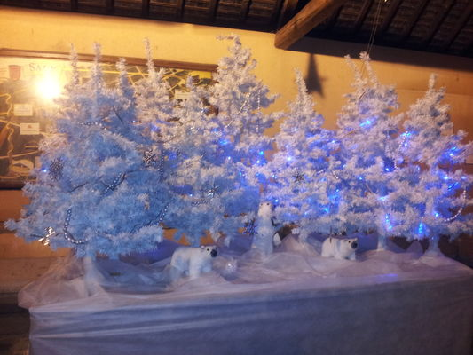 Un hiver à Sacy