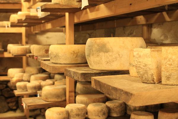 Tommes de fromage
