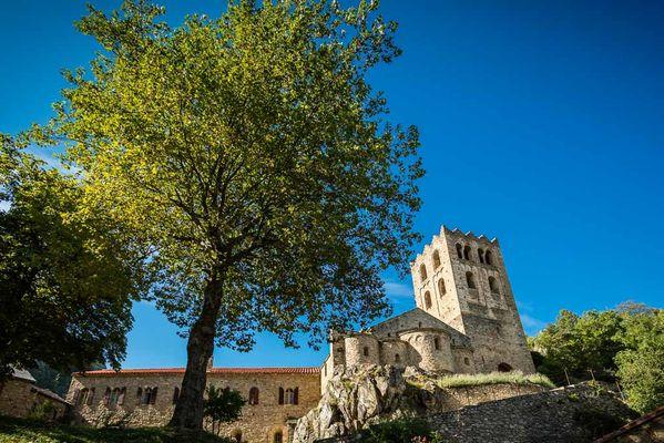Abbaye Saint Martin du Canigou-Casteil_16