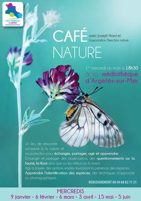 Cafe nature
