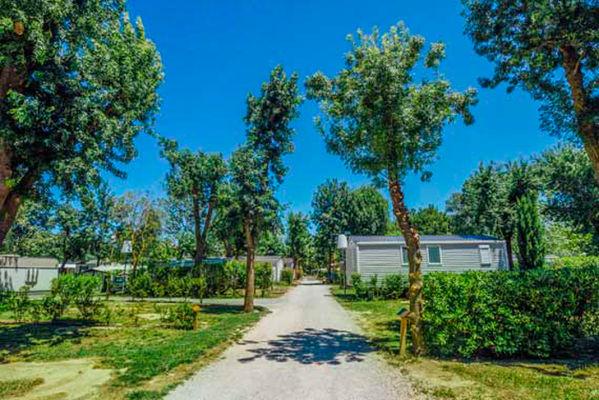 Camping Sunelia Les pins 7