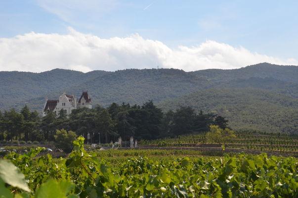 DEGLAR0660000096 vue vignes et chateau