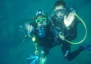 La Sirene Plongee