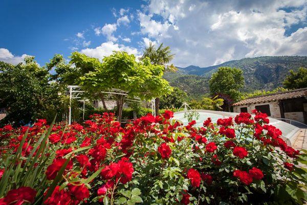 Les jardins d'Aymeric-Clara_1