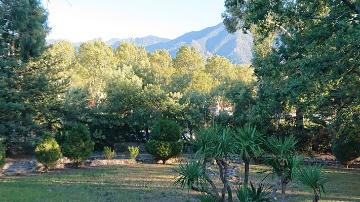 Parc vue sur Canigou