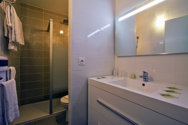 Salle de bains avec douche hôtel princess
