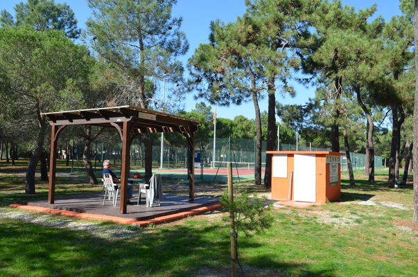 forest_pins_tennis_argeles_2015_1
