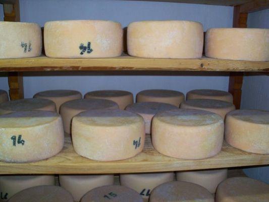 fromages_van_der_steen_argeles_2016 (2)